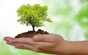 Curso Gratuito de Educação Ambiental – Senai–SP