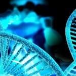 genética-960x623