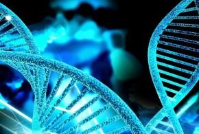 5 apostilas gratuitas de Genética pra baixar e estudar para o vestibular